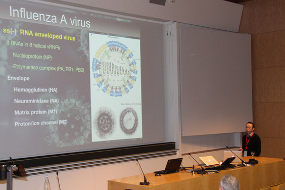 Yohei gives talk at Viruses - At the Forefront of Virus-Host Interactions