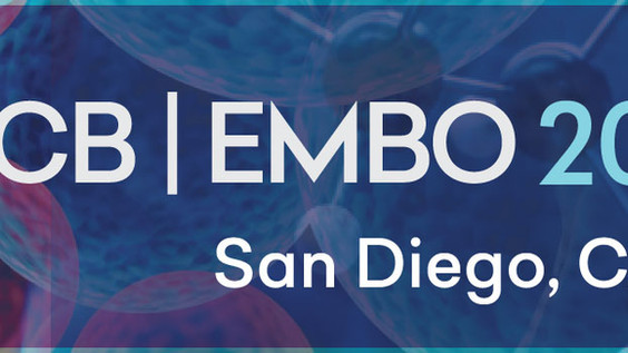 Yohei presents work at the ASCB EMBO 2018 Meeting in San Diego