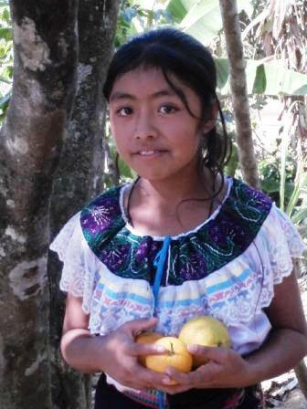 GUAQUITEPEC, CHILON  MOARADAS VERDES 093