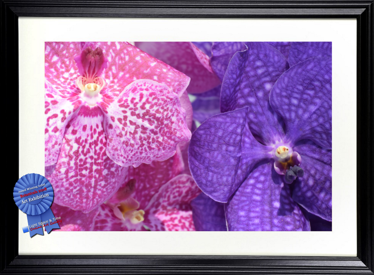 Orchid Moon Framed