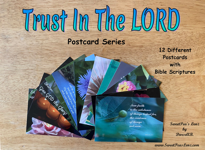 Trust In The Lord Postcard Series
