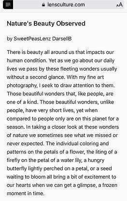 SPLZ Nature's Beauty Observed - LensCulture
