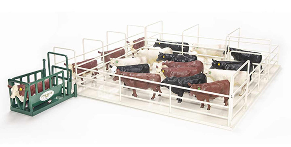 Cattle Corral Squeeze Chute Combination Set