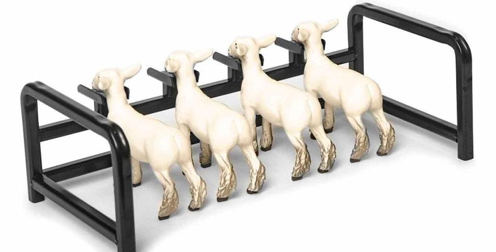4 Head Goat and Lamb Show Rail