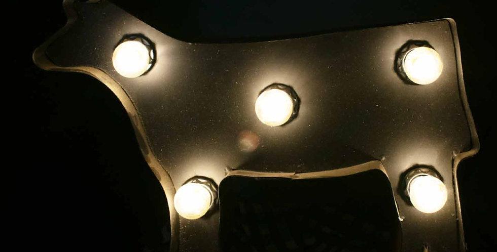 Light Up Heifer