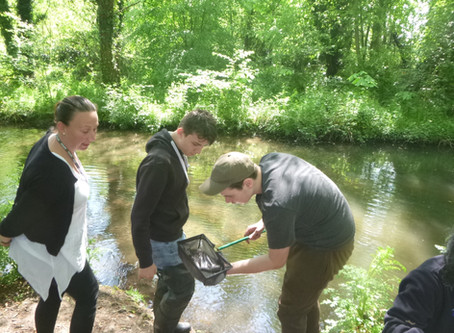 A focus on Fishing for Schools in Kent