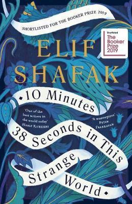 10 Minutes 38 Seconds in this Strange World (Hardback)