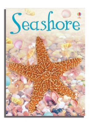 Seashore (Usborne Beginners)