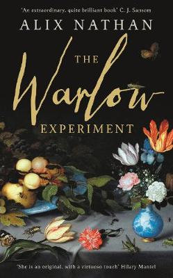 The Warlow Experiment (Hardback)