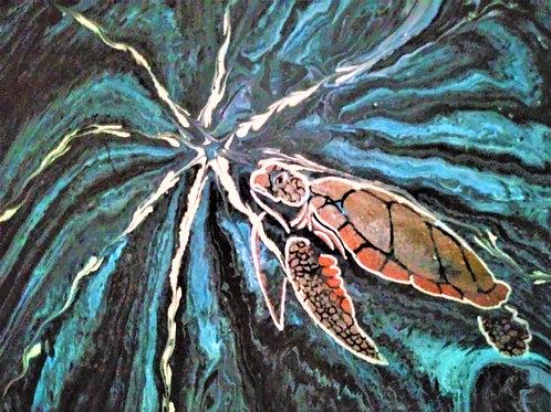 Whirlpool Tortoise