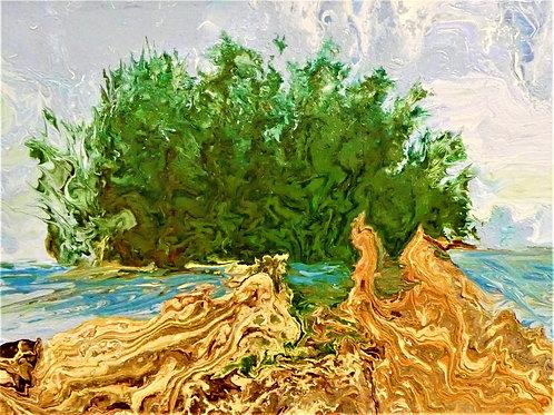 Rialto Beach Driftwood