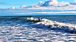 Surfer_Cindy_Friesen-FordAshurst.jpg