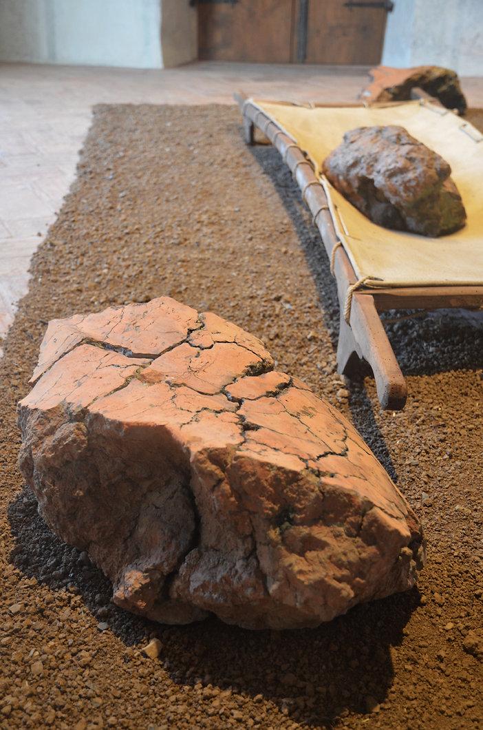 4fallow_land_web_installazione_museo.jpg
