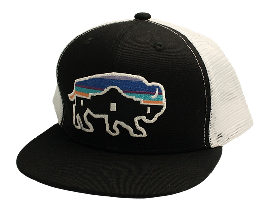 Red Dirt Alamo Buffalo Cap