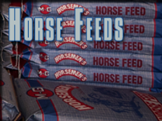 horse-feeds.png