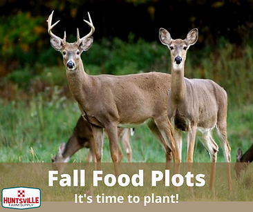 Fall Food Plots.png