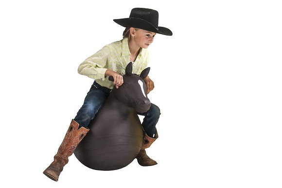 Big Country Bouncy Horse