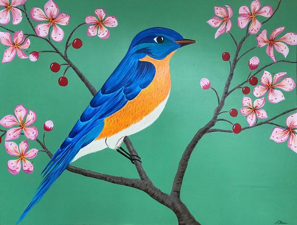 Bluebird in Cherry Tree