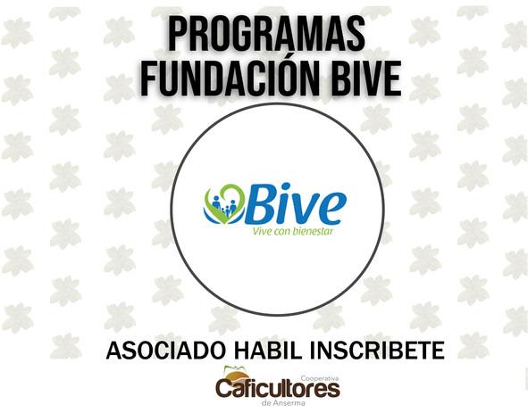 PROGRAMAS FUNDACION BIVE.jpg