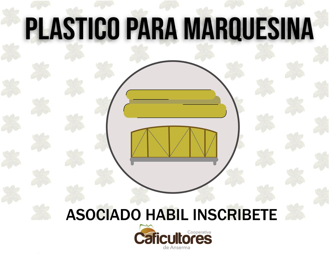 plastico para marquesina.jpg