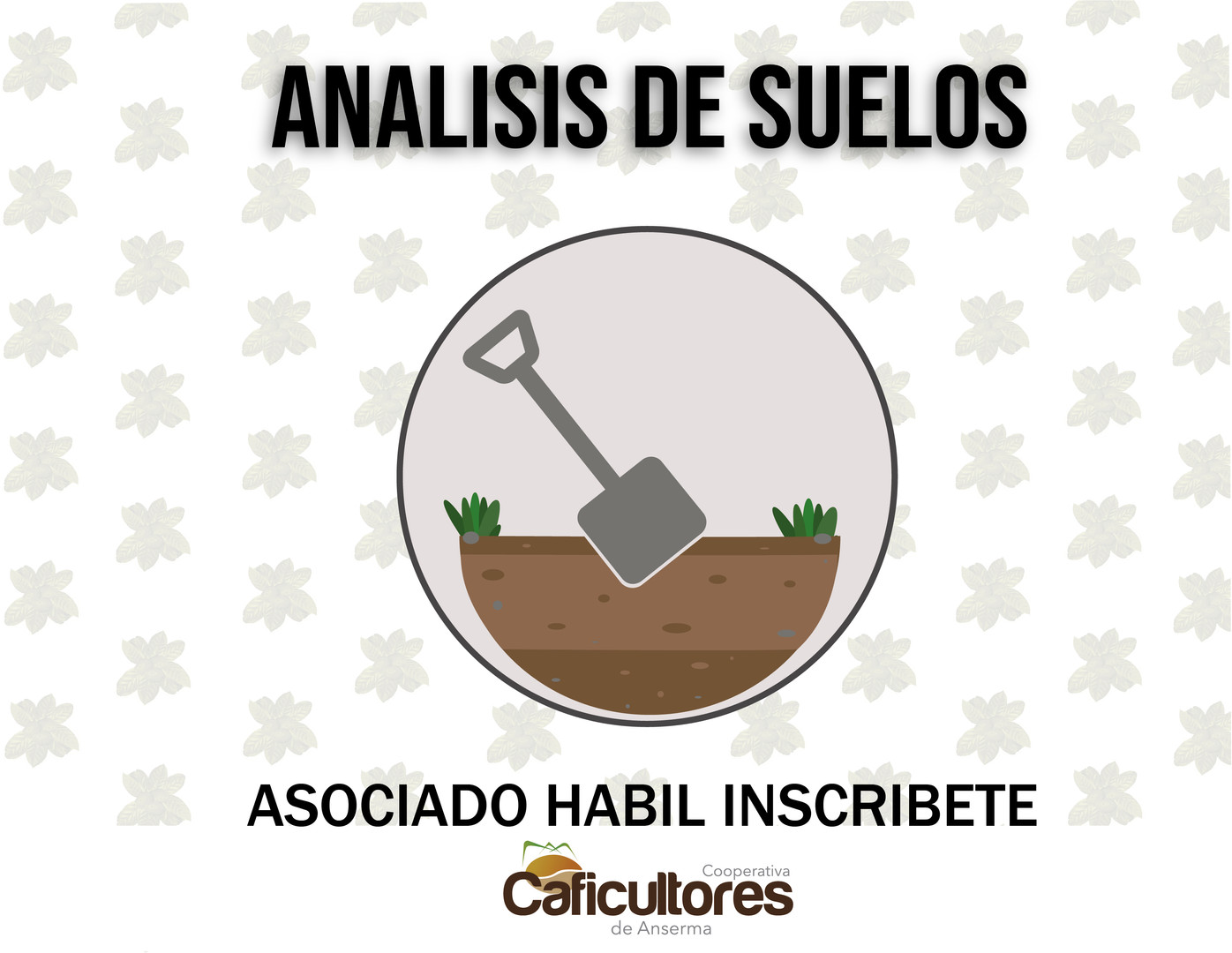 analisis de suelos.jpg