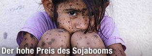 Der hohe Preis des Sojabooms - Menschliches Leid durch Wildtierfütterung