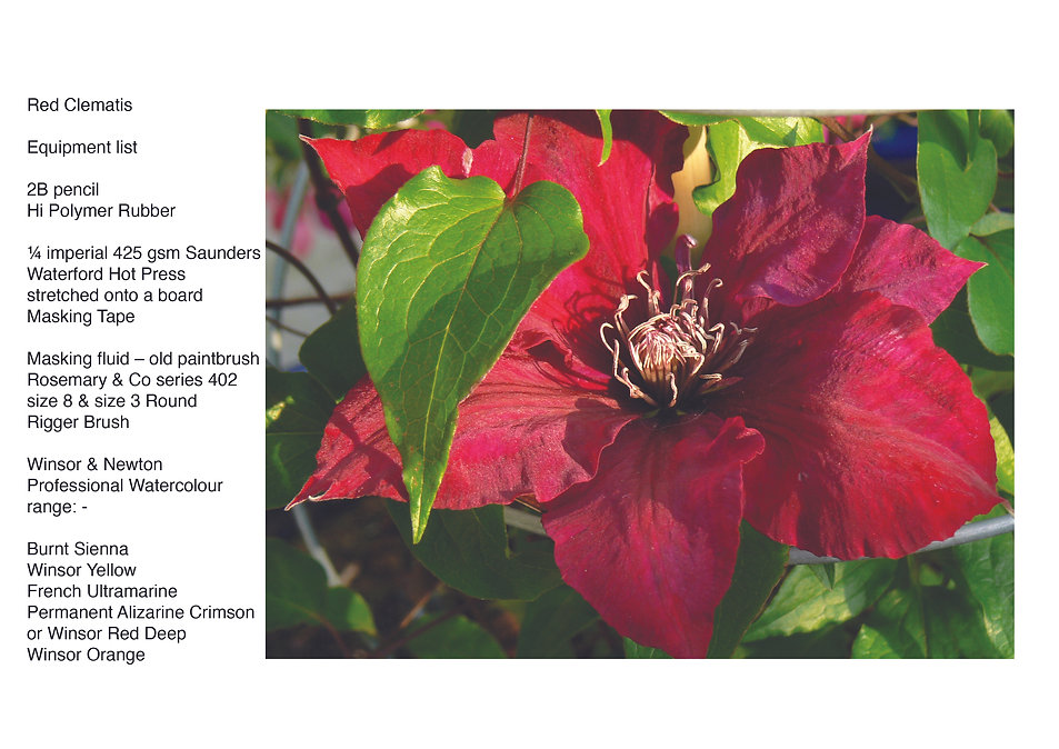 Red Clematis.jpg