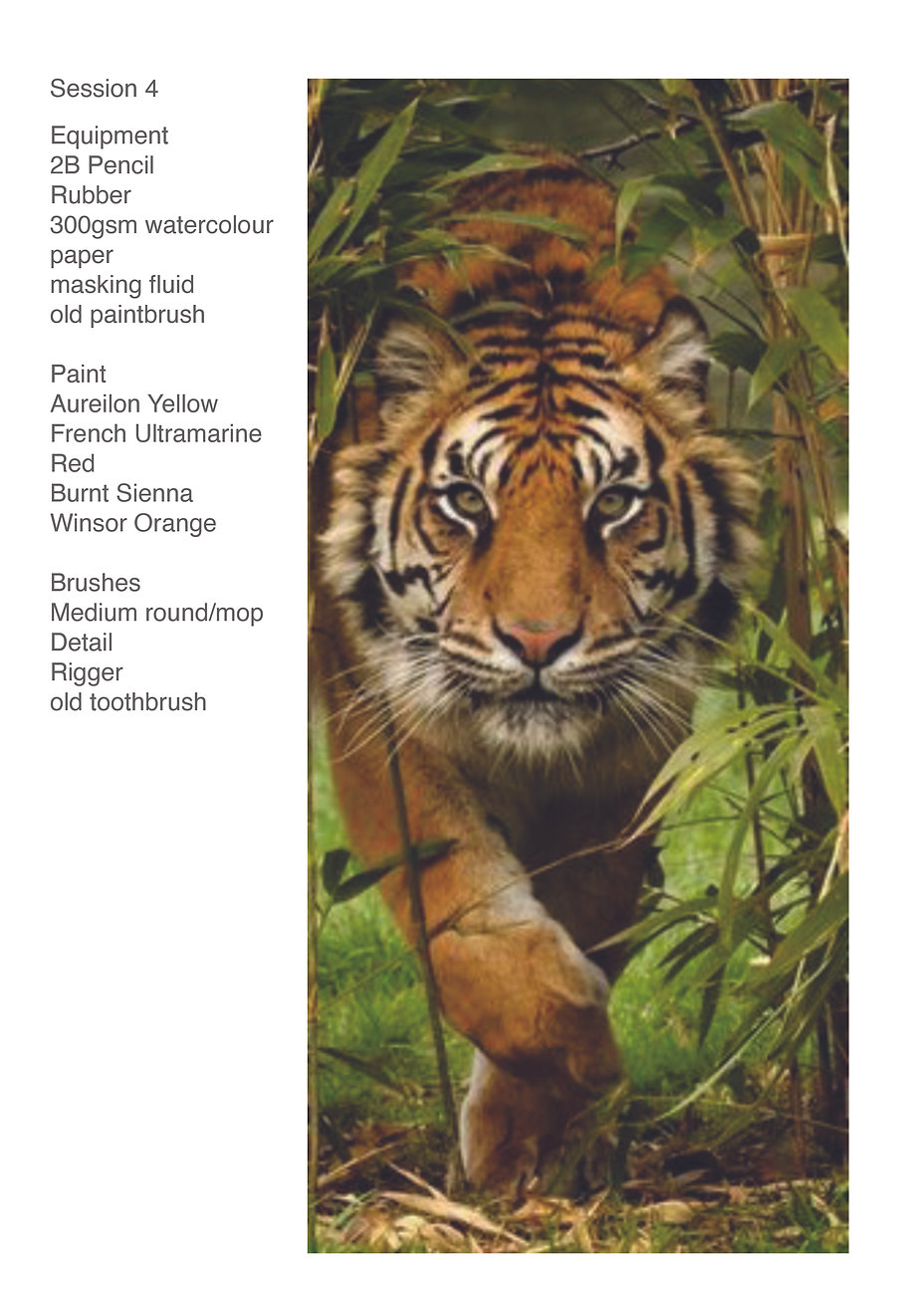 Tiger Image and equipment.jpg