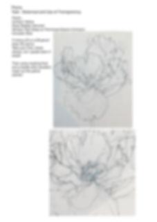 peony worksheet p1.jpg