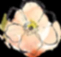 Peach & Orange Centre Flower.png