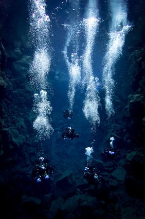 Dive-2017-12-03-24-of-34_1.jpg