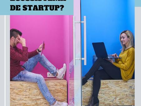 Startup: O que é Ecossistema de Startups?