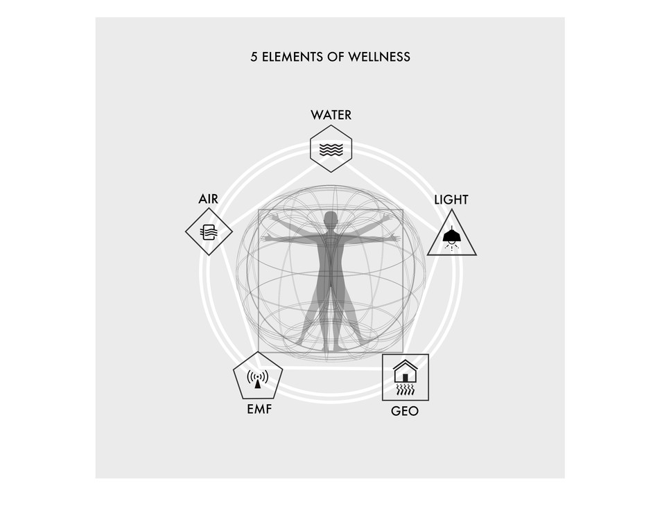 GEO WELLNESS 5 ELEMENTS CHART.jpg