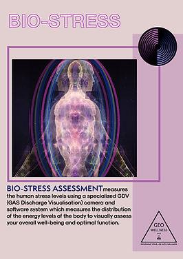 Bio Stress Assessment copy.jpg
