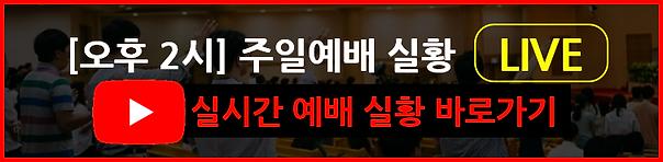 주일예배실황_new.png