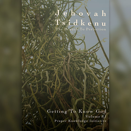 Jehovah Tsidkenu - The Branch To Perfection