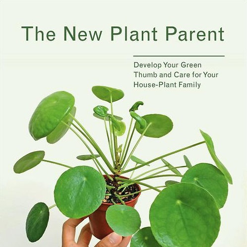 NEW PLANT PARENT: DEVELOP YOUR GREEN THUMB AND CARE FOR YOUR HOUSE-PLANT FAMILY