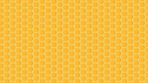 Bee Background 1.jpg