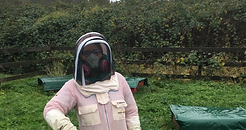honeybee agriculture respirator   honeybee maintenance   varoa mite treatment