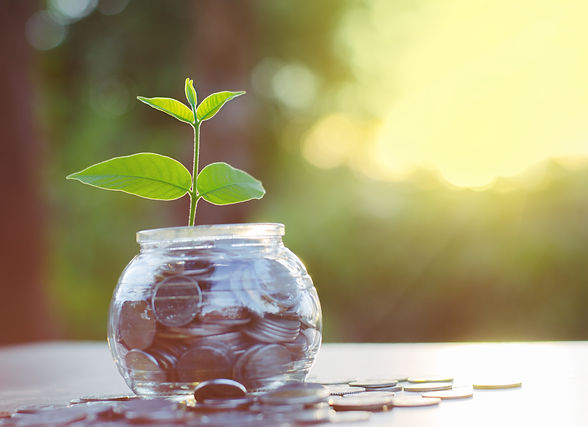Sprout growing on glass piggy bank with sunset light in saving money concept.jpg