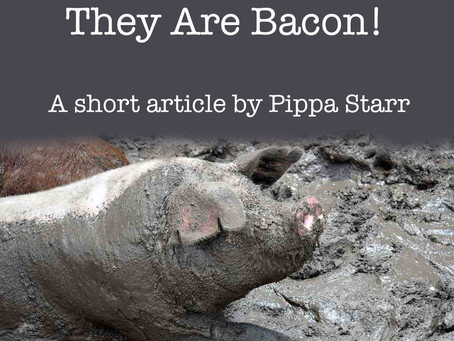 Pigs Don't Save Lives, They Are Bacon!