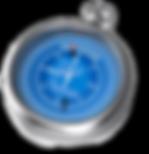 DDU compass logo.png