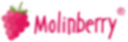 Molinberry best logo wht bkd PNG.png