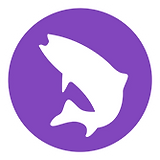 salmon_icon.png
