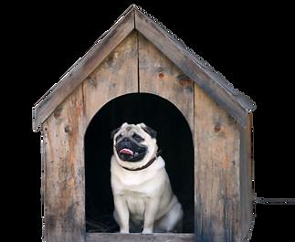 pug house.png