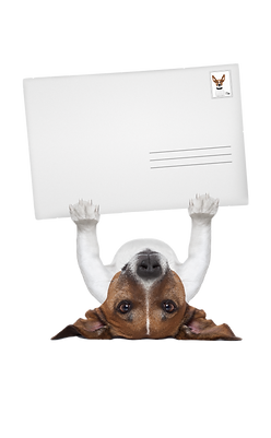 upside down mail dog.png