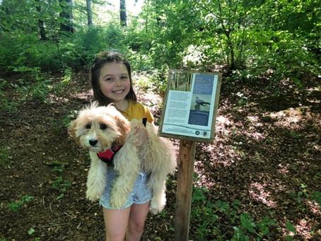 Evie's Dog Treats Show She's A Superstar