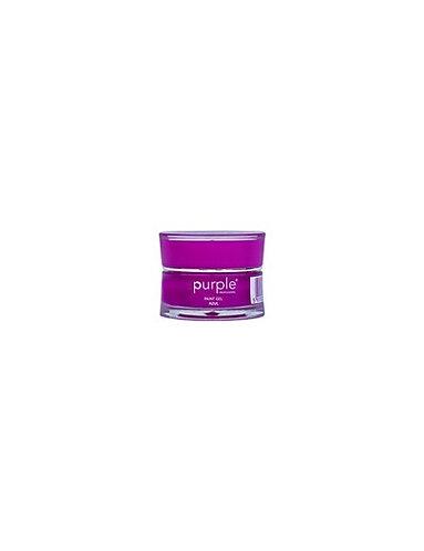 Paint Gel Azul 5gr Purple