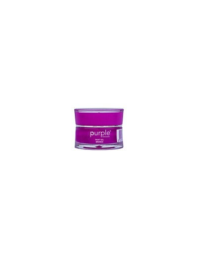 Paint Gel Branco 5gr Purple