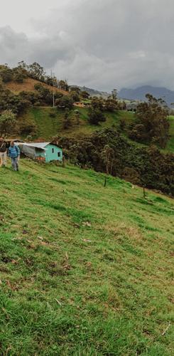 Columbian mountains